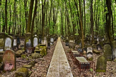 Old Jewish Cementery will be one of the main spots on the Jewish Warsaw Tour